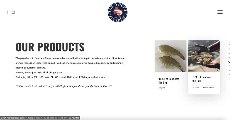 houston website support1